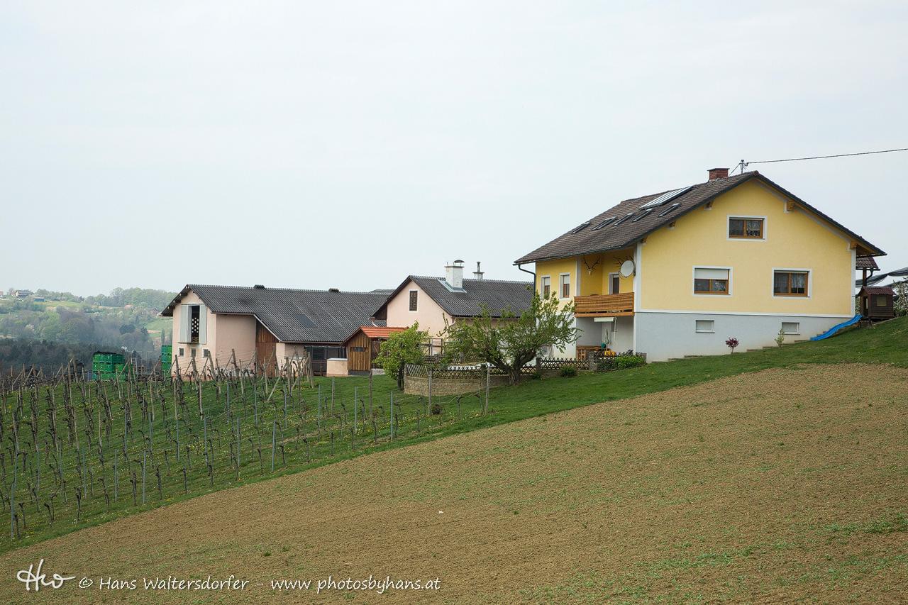 vulgo Hauerhiesel in Pichla, im 19. Jahrhundert eine Generation lang von der Familie Waltersdorfer bewirtschaftet